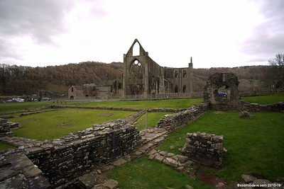 Tintern Abbey 010