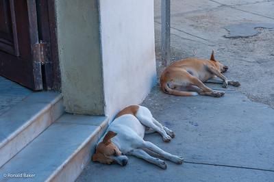 2013-12-21-Cuba Trip-1552