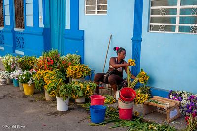 2013-12-22-Cuba Trip-1667