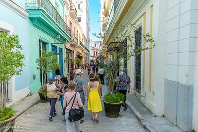 2013-12-21-Cuba Trip-1549