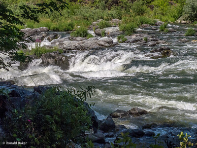 2012-07-21-Ashland-Rogue River-65