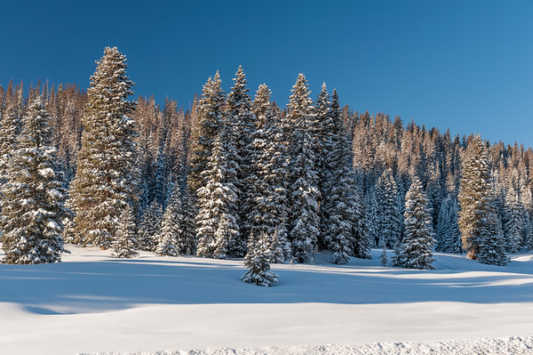 Wolf Creek Pass, Colorado (December 2011)