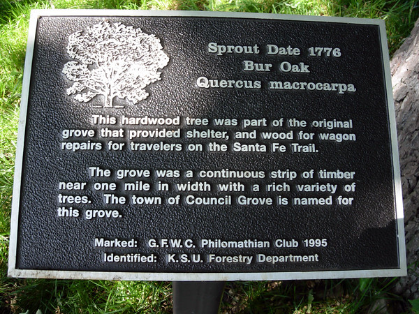 Council Oak, Council Grove KS (June 2007)