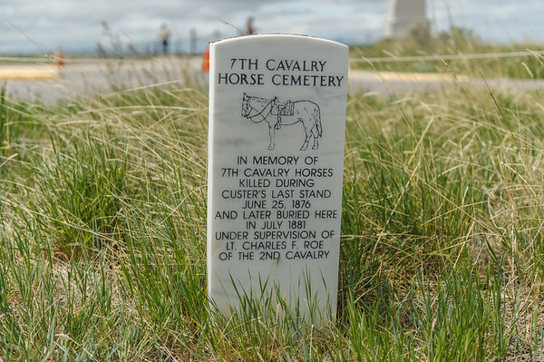 7th Calvalry Horse Cemetery, Battle of the Little Bighorn NMP (May 2012)