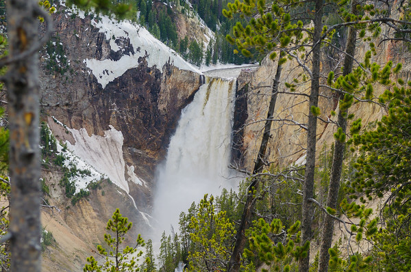 Lookout Point, Lower Falls, Yellowstone NP (June 2011)