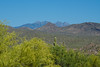 Loving A Four Peaks View, Rio Verde AZ (29 May 2015)