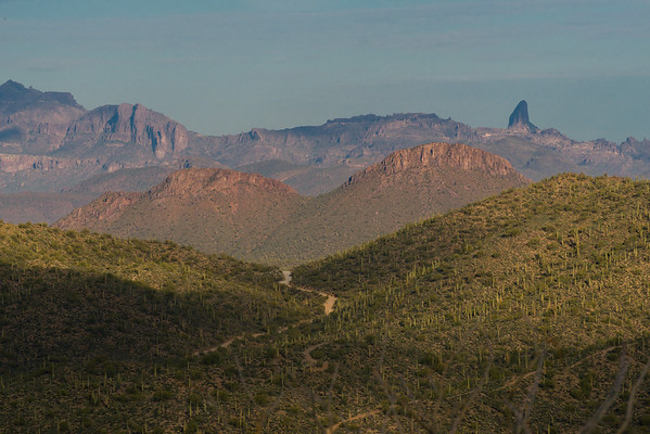 Weaver's Needle, The Mineral Mountains, Florence AZ (January 2014)