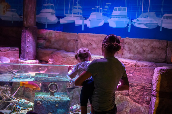 Bridget and Aria at Sea Life Arizona Aquarium, Tempe AZ (21 February 2015)