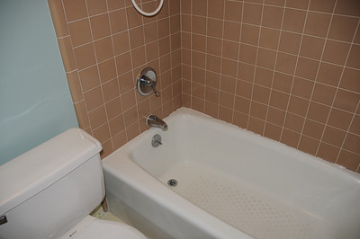 Guest Bath Before - 2008