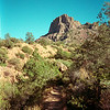 1999 - Chisos Mts, Big Bend Natl Park, Backpacking Trip