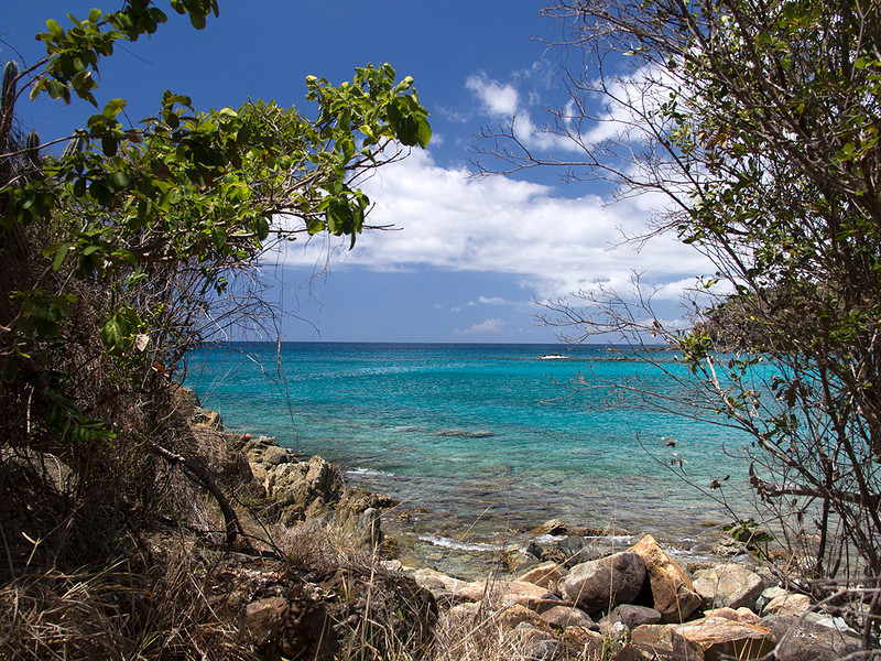 Salt Pond Bay<br /> Ram Head Trail<br /> <br /> St. John, USVI<br /> March 2013