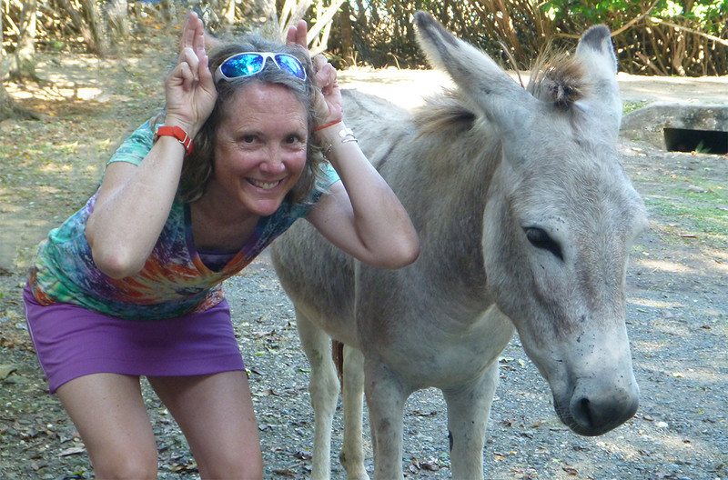 I enjoyed this a lot more than the donkey<br /> Cinnamon Bay Campground<br /> <br /> St. John, USVI<br /> March 2013