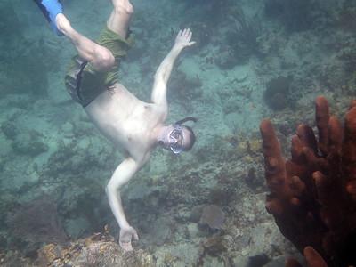 encounter with coral in 3 ... 2 .. 1  Cinnamon Bay St. John, USVI March 2013