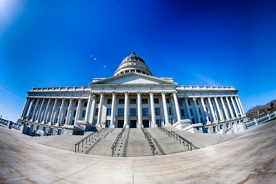 20130412_StevePetersonPhotography_-23