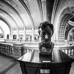 20130412_StevePetersonPhotography_-7