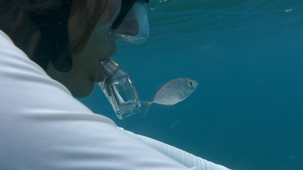 Snorkeling with my little fish friend.  Waterlemon Bay.