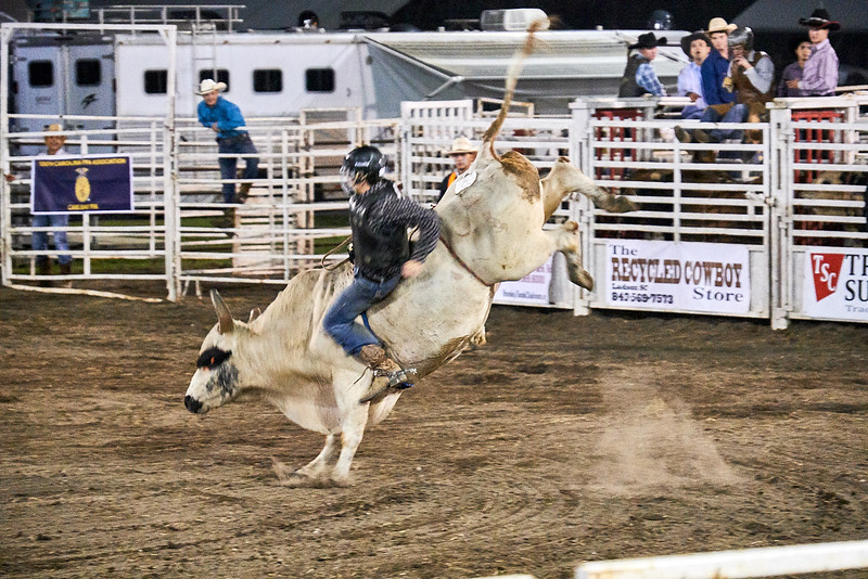 Bull really irritated - Cowboy still in control.