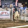 Cowboy has him under control??