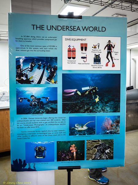 The Undersea World