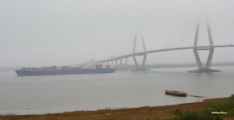 It has been foggy on the harbor for the last 4 or 5 days. I love to hear the sounds of the fog horns when it gets fogged in.