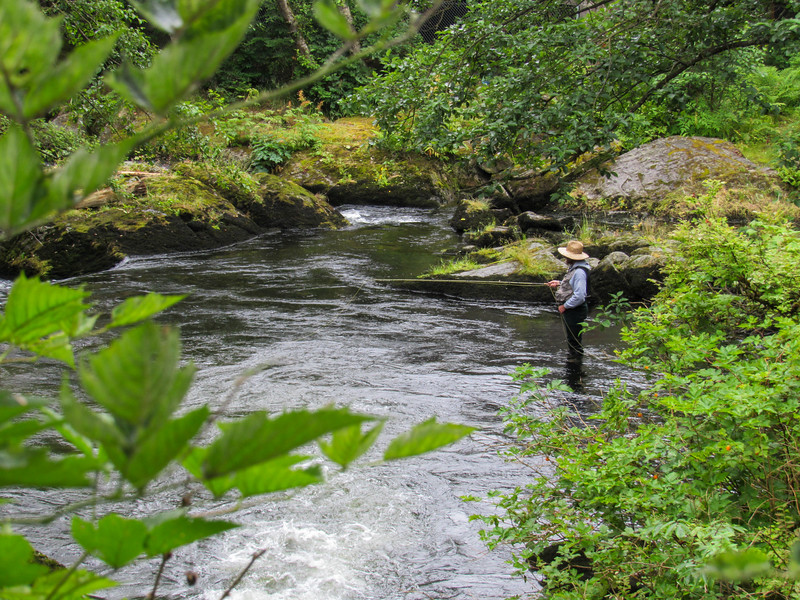 Fishing in Ketchikan Creek