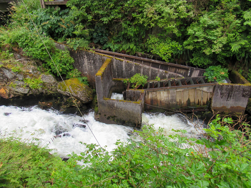 Fish ladder for salmon on way to spawn