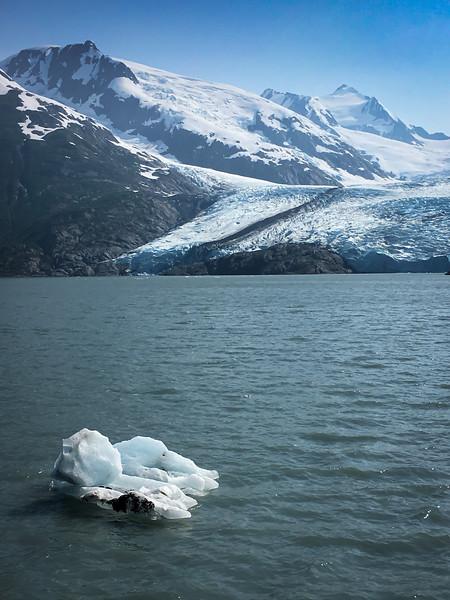 Iceberg from Portage Glacier