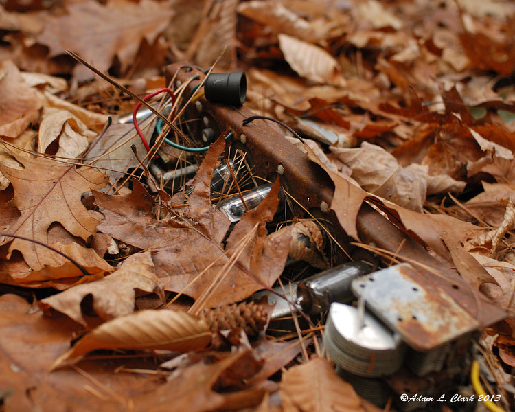 Parts of an old radio under some leaves outside