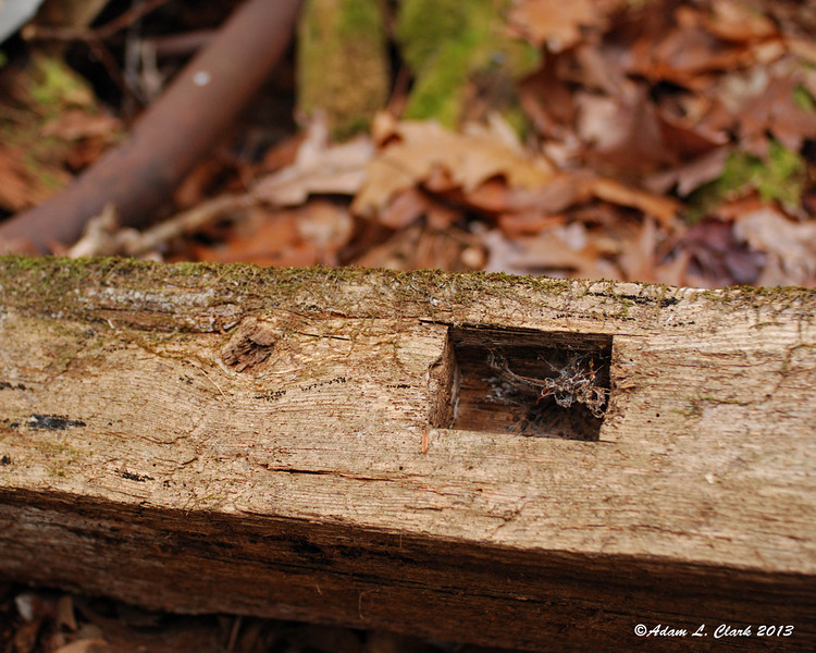 Square notches in some lumber could be seen.  After looking closely, you could tell they drilled a large hole and then used a wood chisel to finish making the shape