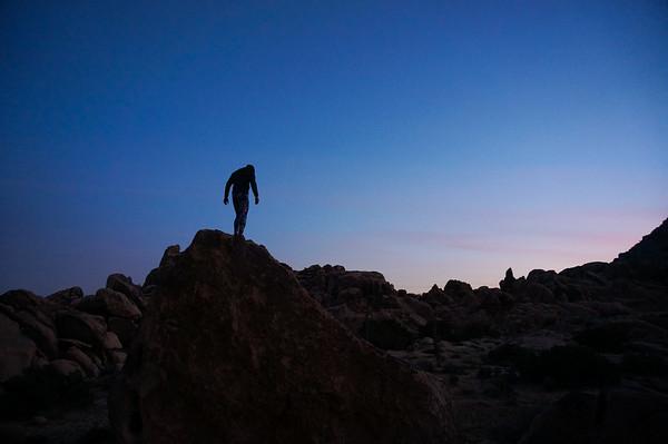 In Joshua Tree at dusk