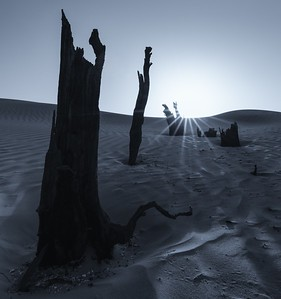 Scorched Earth II
