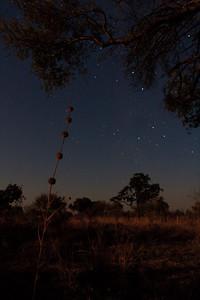 09AZa8376 Africa Botswana Okavango Delta River Seronga