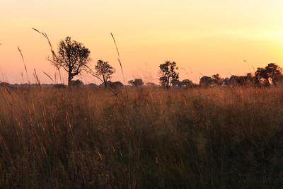 09AZa8406 Africa Botswana Okavango Delta River Seronga Dawn