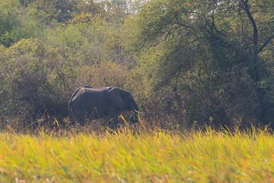 09AZa8322 Africa Botswana Landscapes Okavango Delta Okavango River Rivers Seronga Water