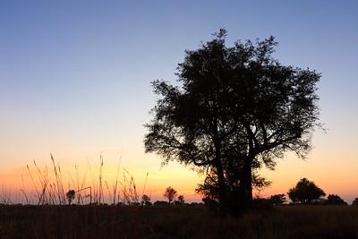 09AZa8386 Africa Botswana Okavango Delta River Seronga Dawn
