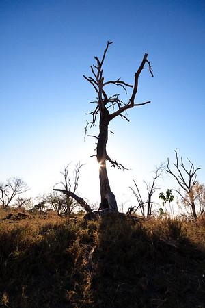 Click here to buy at Alamy. Keywords: Africa Sky Botswana Okavango Delta River Seronga MyID: 09AZb2975