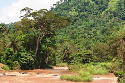 09AZb2469 Africa Cameroon Rivers Tree Water Wum Wum Bamenda