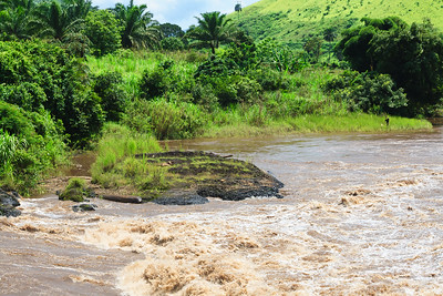 09AZb2462 Africa Cameroon Rivers Tree Water Wum Wum Bamenda
