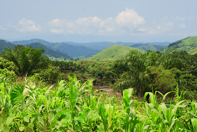 09AZb2460 Africa Cameroon Landscapes Mountain Valley Wum Wum to Bamenda