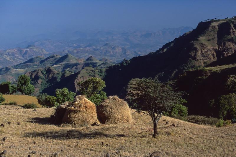 near Axum