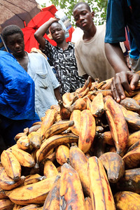 09AZa2520 Africa Bamako Bananas Colours Food Fresh Fruit Fruit and Vegetable Stalls Mali Markets Streets Yellows