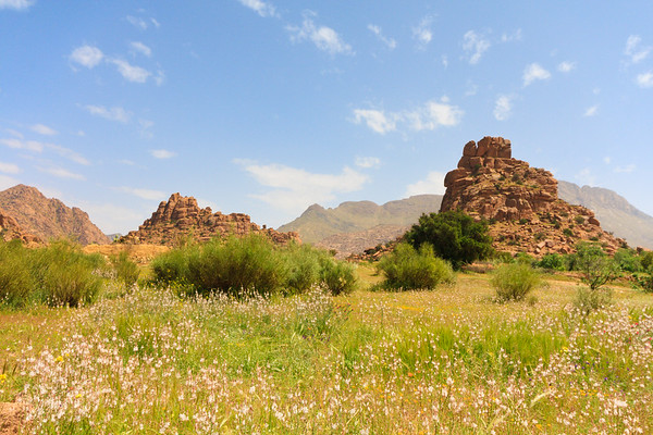 09AZa273 Africa Blue Skies Flowers Landscapes Light Morocco Mountain Nature Rocks Tafraoute Valley