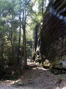 Rock wall inside Dismals Canyon near Hackleburg, AL.
