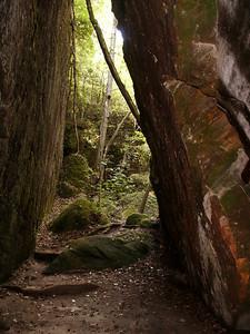 Dismals Canyon, AL