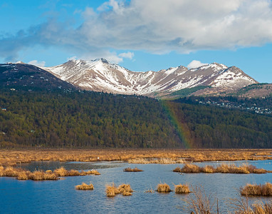 Alaskan Rainbow, Potters Marsh, AK
