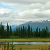 Scenery along a train ride from Skagway to Denali