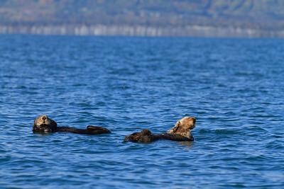 2011_09_23 Alaska 081