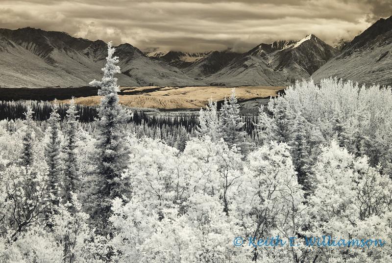 Matanuska valley and glacier, in infrared