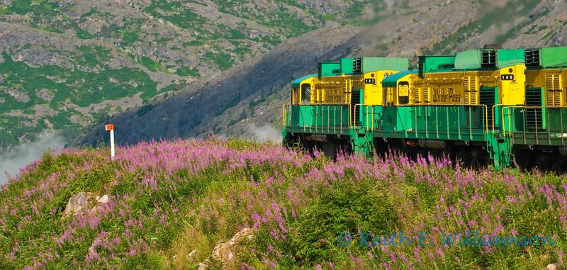 Yukon & White Pass Railroad