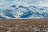 North Slope and Brooks Range
